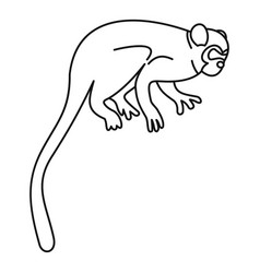Capuchin monkey icon outline style vector