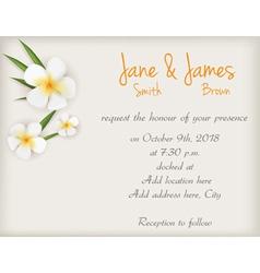 Wedding plumeria background vector