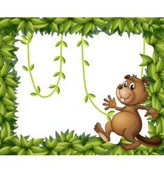 A beaver and the empty frame with vine plants vector image