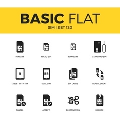 Basic set of SIM icons vector image