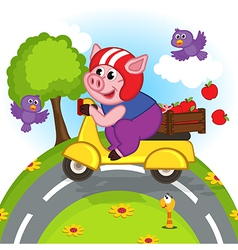 Pig riding a scooter vector
