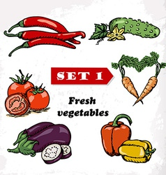 Set 1 Fresh vegetables of tomato eggplant pepper vector image vector image