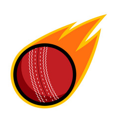 Sport ball fire cricket vector