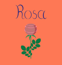 Flat on background plant rosa vector
