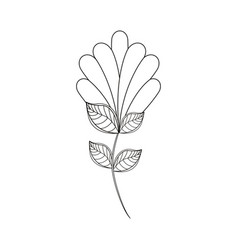 flower decoration natural line vector image