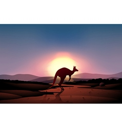 A sunset at the desert with a kangaroo vector