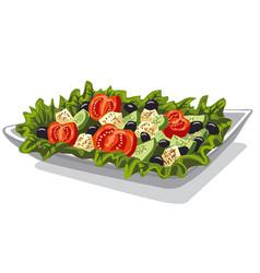 Fresh vegetables salad vector