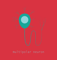 structure of a motor neuron vector image