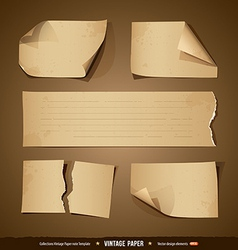 Vintage paper collections empty template vector image