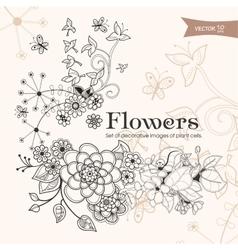 Flowers 02 vector