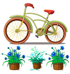 bike and blue lilies in pots isolated vector image vector image