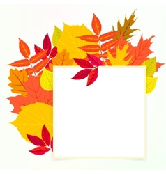 card with autumn decor and leafs vector image vector image