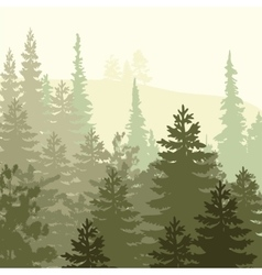 Panorama of wild coniferous forest vector