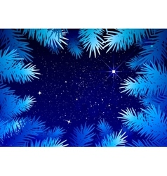 Starry sky in the winter forest Spruce branches vector image vector image