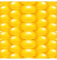Yellow corn background vector
