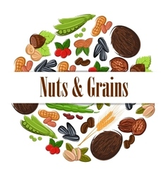 Nutritious nuts and grains in round shape emblem vector