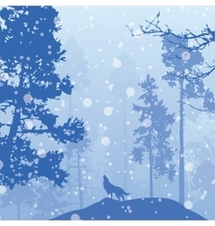 Panorama of wild coniferous winter forest vector
