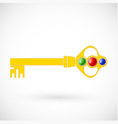 magic key icon isolated vector image vector image