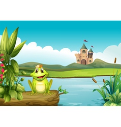 A frog with a crown at the river vector image vector image