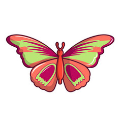 Butterfly archippus sangaris icon cartoon style vector