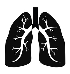 Human lung vector
