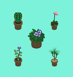 Isometric flower set of flowerpot flower vector