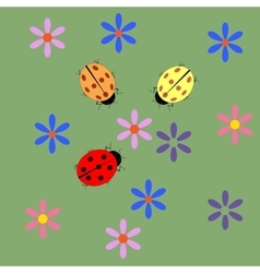 Ladybug and flower card vector