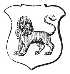 Lion statant gardant is an animal standing still vector