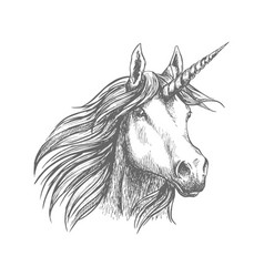 unicorn horse animal sketch vector image vector image