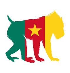 Mandrill Cameroon vector image