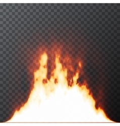 Realistic fire flames on transparent grid vector