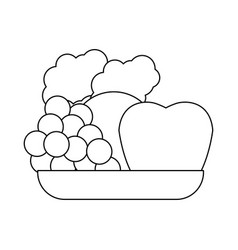Healthy fruits icon vector