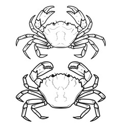 Set of crabs icons isolated on white background vector