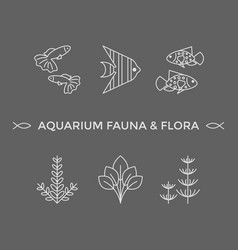 Thin line icons - aquarium flora and fauna vector