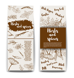 Set of banners templates with hand drawn herbs vector