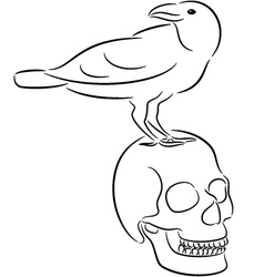 Skull and raven vector