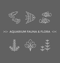 thin line icons - aquarium flora and fauna vector image
