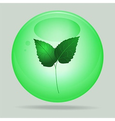 Green glass sphere with leafs inside vector