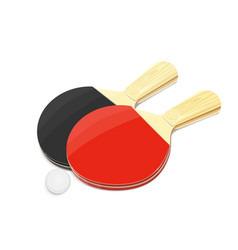 Pair of table tennis racket vector