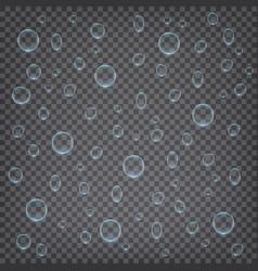 realistic water drops transparent vector image