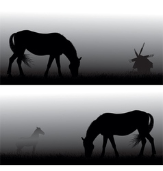Feeding horses in fog vector
