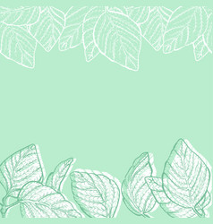 Eco green background in mint colors vector