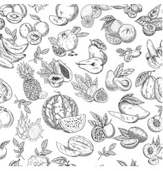 Seamless pattern background of sketched fruits vector