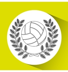 volleyball sport design vector image