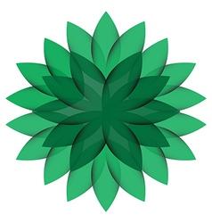Green Wheel Flower isolated vector image