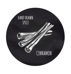 Cinnamon sketch in blackboard round vector