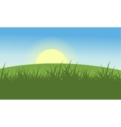 Landscape of hill at morning vector image