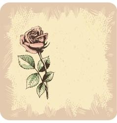 Vintage roses background vector image vector image