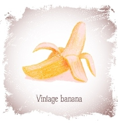 Vintage card with banana vector