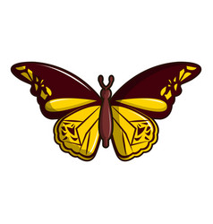Cyane butterfly icon cartoon style vector